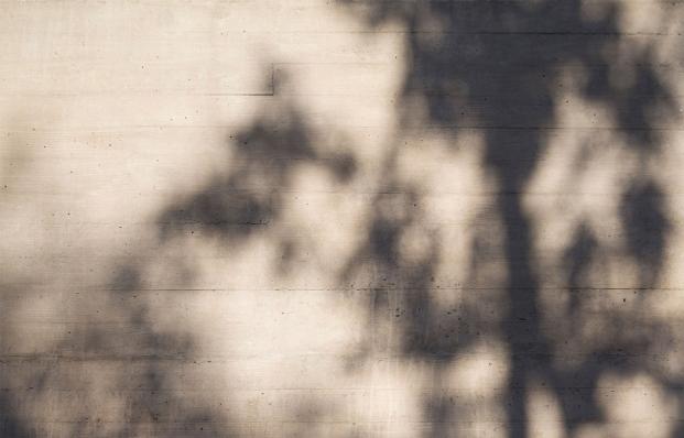 http://federicocairoli.com/files/gimgs/th-153_05_Casa-Marindia---©-Federico-Cairoli-(low).jpg