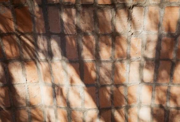 http://federicocairoli.com/files/gimgs/th-30_09_TECT - Ph_Federico Cairoli (low).jpg