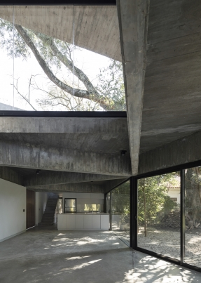 http://federicocairoli.com/files/gimgs/th-332_12_Casa en los arboles .jpg