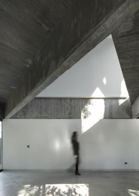 http://federicocairoli.com/files/gimgs/th-332_29_Casa en los arboles .jpg