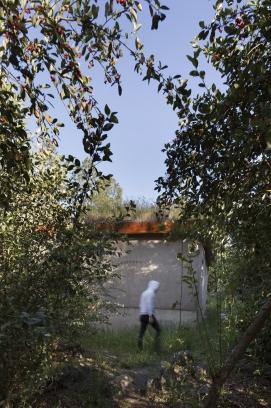 http://federicocairoli.com/files/gimgs/th-211_01_Hipotalamos - © Federico Cairoli (low).jpg